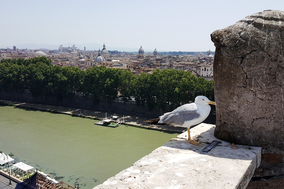 Смотровая площадка замка Святого Ангела