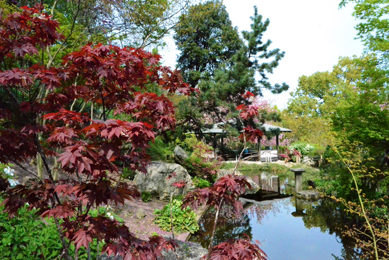 ботанический сад рима